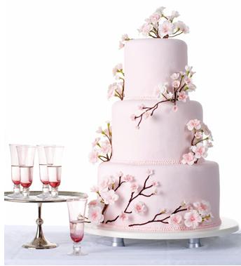 Cb cake