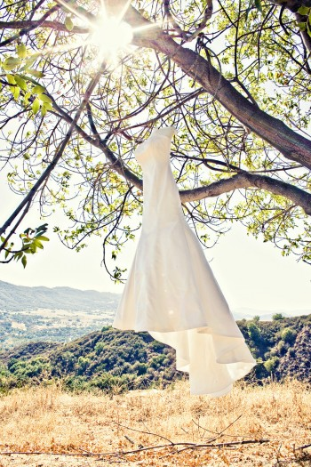 Gown in tree eliz anne