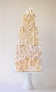 Maggie-Austin-Cake-Appliqué-183x300