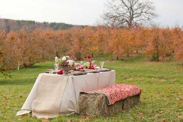 New-england-apple-orchard-thanksgiving1